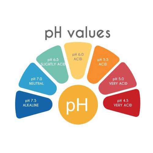 PH values image