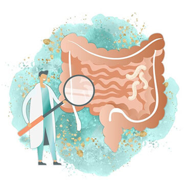 Doctor with intestine image